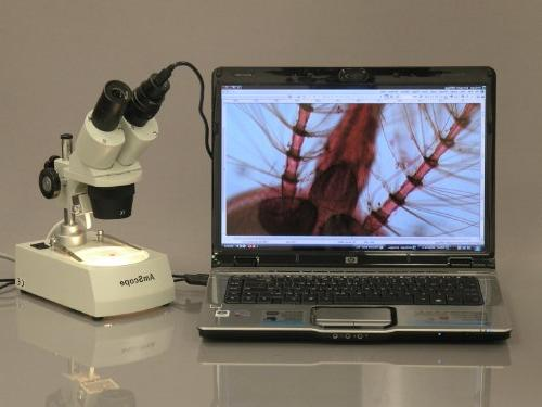 Microscope for Still and Video Images, 40x Magnification, Eye USB Software